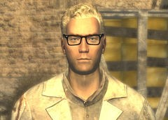 fallout 4 gay mod