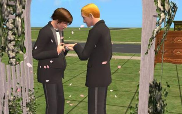 Sims marriage