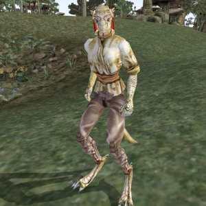 Image of Traveling-New-Woman (Female Argonian) in Morrowind: http://www.uesp.net/w/images/d/d8/MW-npc-Travelling-New-Woman.jpg