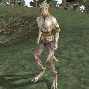 Image of Traveling-New-Woman (Female Argonian) in Morrowind: http://www.uesp.net/w/images/d/d8/MW-npc-Travelling-New-Woman.jpg